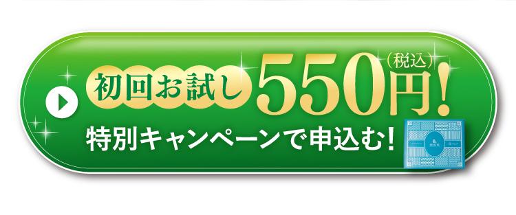 初回お試し500円!
